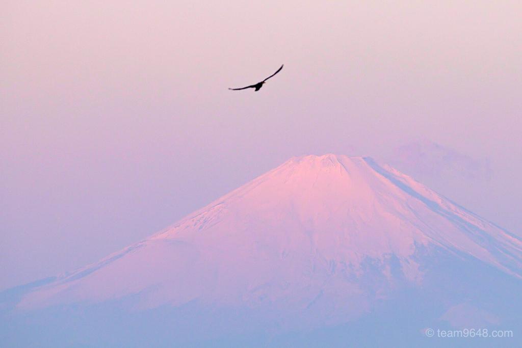 sigma 100-400 富士山 朝