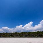 稲毛海岸 白い砂浜